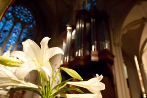organ-with-lily